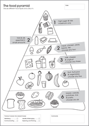 My First Activity Workbook - The Food Pyramid