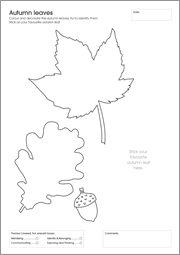 My First Activity Workbook - Autumn Leaves